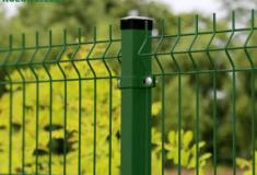 zielony-300x225